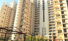 Ivy Terraces Gurgaon
